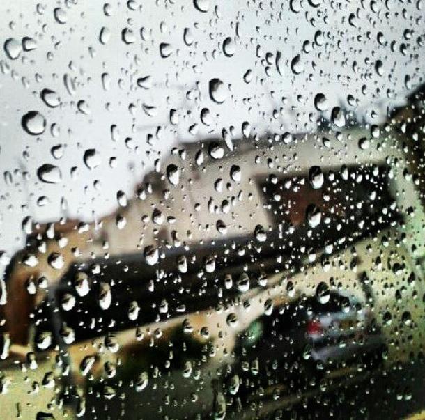 מבט מחלון ביתו של גל מחי בקרית חיים
