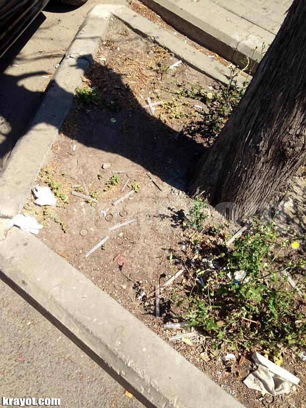 פיות משומשות על המדרכה והצמחים, צומת קרית אתא